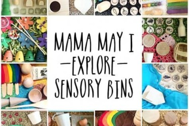 Mama May I Sensory Bin of the Month Club