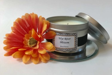 Shore Scents Monthly