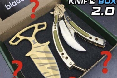 Blade City's Monthly Mystery Knife