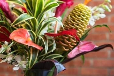 Great Clubs Flower of the Month Club