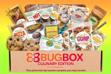 Culinary Bug Box